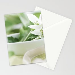 Spring made ​​of dreams with snowdrops and Porzellan Stationery Cards