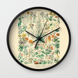 Floral Diagram // Fleurs IV by Adolphe Millot 19th Century French Science Textbook Artwork Wall Clock