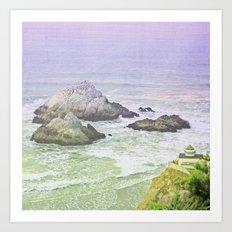 Seal Rocks Art Print