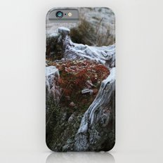 Stump & Frost iPhone 6s Slim Case