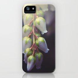 Sweet Bells iPhone Case