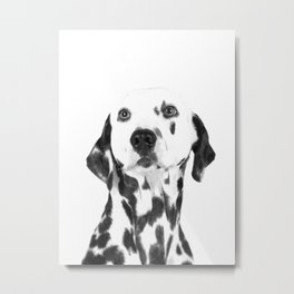 Black and White Dalmatian Metal Print