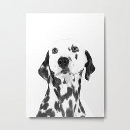 Black and White Dalmatian Metal Print