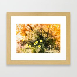 Super Bloom Cactus 7310 Framed Art Print