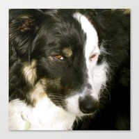 best friend Canvas Prints featuring Best Friend by Layton Zimmages