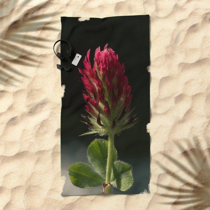 Red Clover Beach Towel