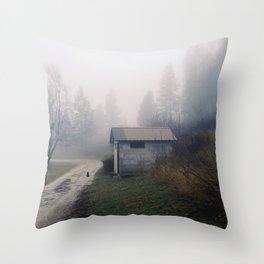 Barn Cat Throw Pillow