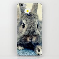 bunny iPhone & iPod Skins featuring Bunny by Falko Follert Art-FF77