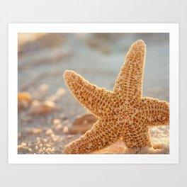 Sugar Starfish Art Print