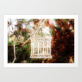 Bird cage in forest Art Print