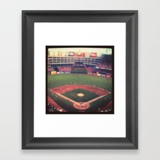 At the Ballpark   Framed Art Print