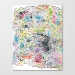 Spotted Mess Canvas Print