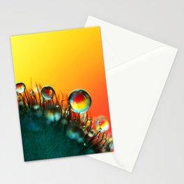 Poppy Drops Stationery Cards