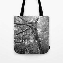 Menacing Forest Tote Bag