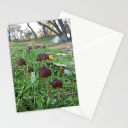 Found Fungus Stationery Cards