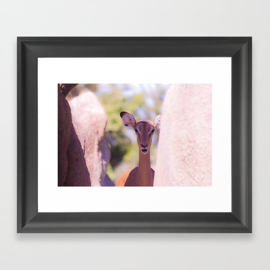 Eland Framed Art Print