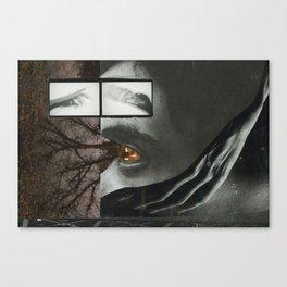 Perception Canvas Print