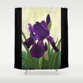 Purple Iris DP150530 Shower Curtain