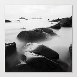 sea4 Canvas Print