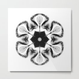 SNO02 Metal Print