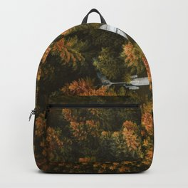 plane lost in the forest Backpack