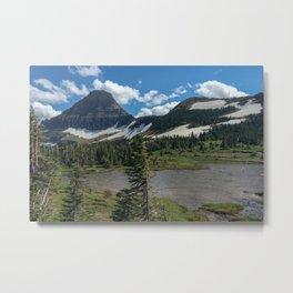 Montana Summer Metal Print
