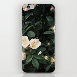 Snowwhite iPhone Skin