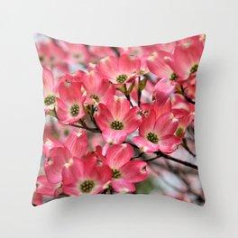 Stunning Pink Dogwood Blooms Throw Pillow