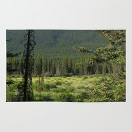 Beautiful Bow Valley Rug