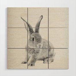 Rabbit 25 Wood Wall Art