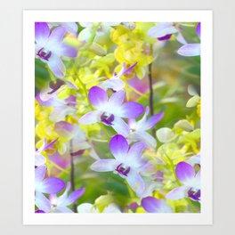 I Love Orchids ... By LadyShalene Art Print
