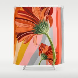Flower petals stripes and bright Gerbera Shower Curtain