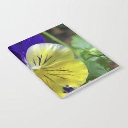 Vivid Viola Notebook