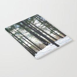 Winter Woods1 Notebook
