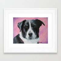 border collie Framed Art Prints featuring Border Collie by paintintheneck