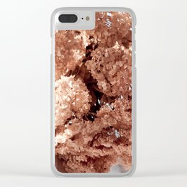 hortensia dried flowers hanging Clear iPhone Case