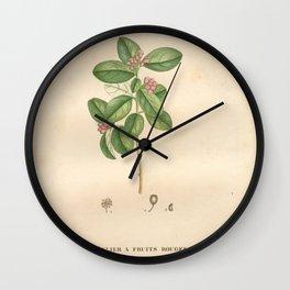 Flower neflier a fruits rouges (Fr)27 Wall Clock