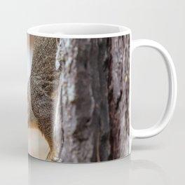 fox squirrel (Sciurus niger) Coffee Mug