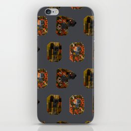 Eyes on the Prize iPhone Skin