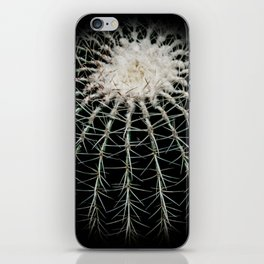 Carinate Cacti I iPhone Skin