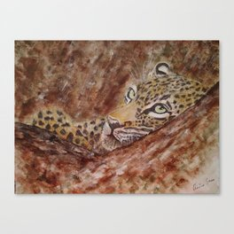 Leopard Thoughts Canvas Print