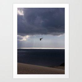 flying over the ocean Art Print