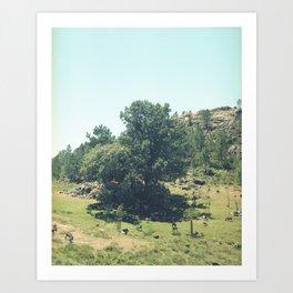 Landscape in Portugal Art Print