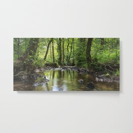 Summer Stream - III Metal Print