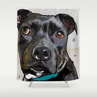 bull terrier Shower Curtains featuring Dog: Staffordshire Bull Terrier by Ed Pires