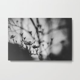 Blooming in the Shadows Metal Print