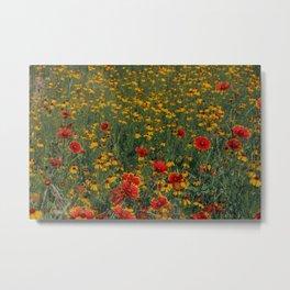 Beautiful Blooming Texas Wildflowers in Spring Metal Print
