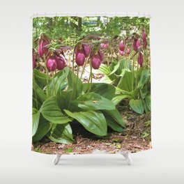 New England Wild Orchid Lady Slipper Flowers Shower Curtain