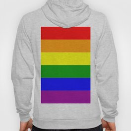 LGBT Gay Pride Flag Hoody