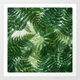 green big jungle leaves Art Print